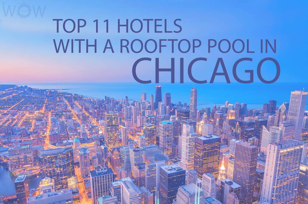 Top 11 Hotels With A Rooftop Pool In Chicago