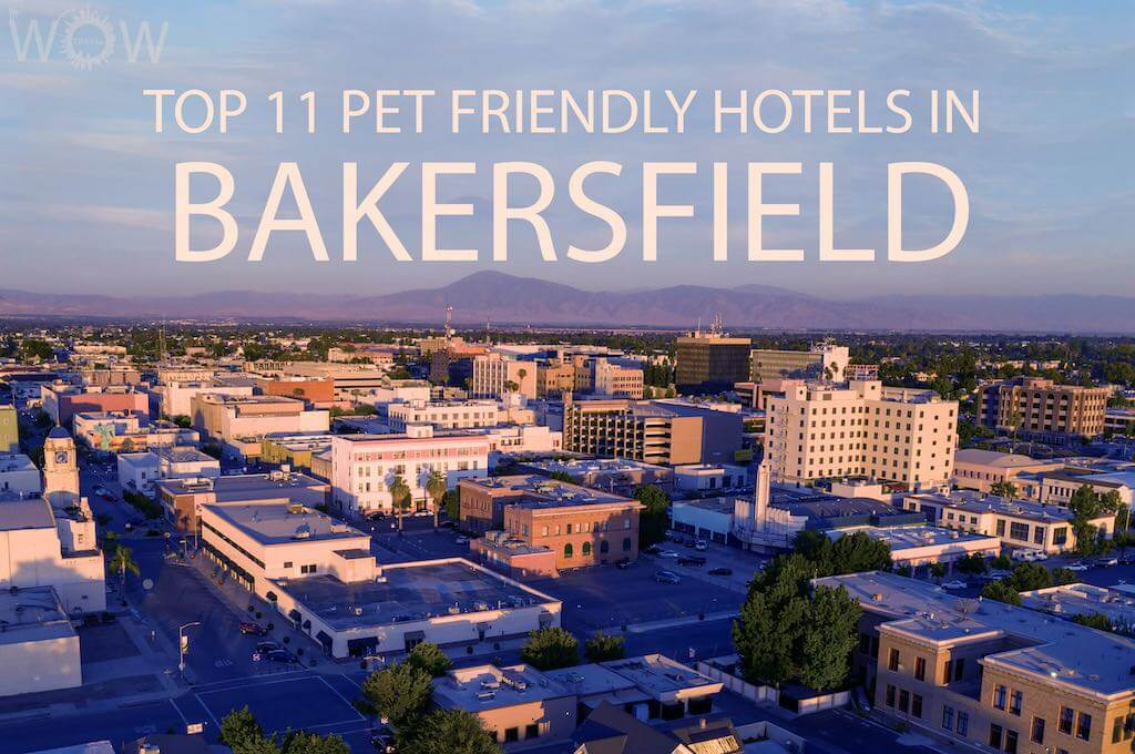 Top 11 Pet Friendly Hotels In Bakersfield