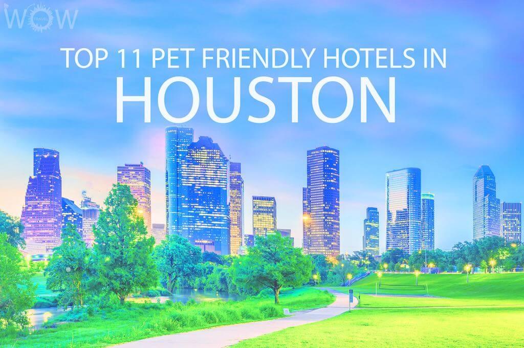 Top 11 Pet Friendly Hotels In Houston