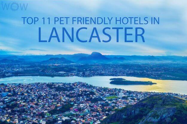 Top 11 Pet Friendly Hotels In Lancaster PA