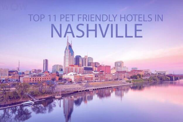 Top 11 Pet Friendly Hotels In Nashville TN