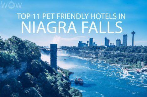 Top 11 Pet Friendly Hotels In Niagra Falls