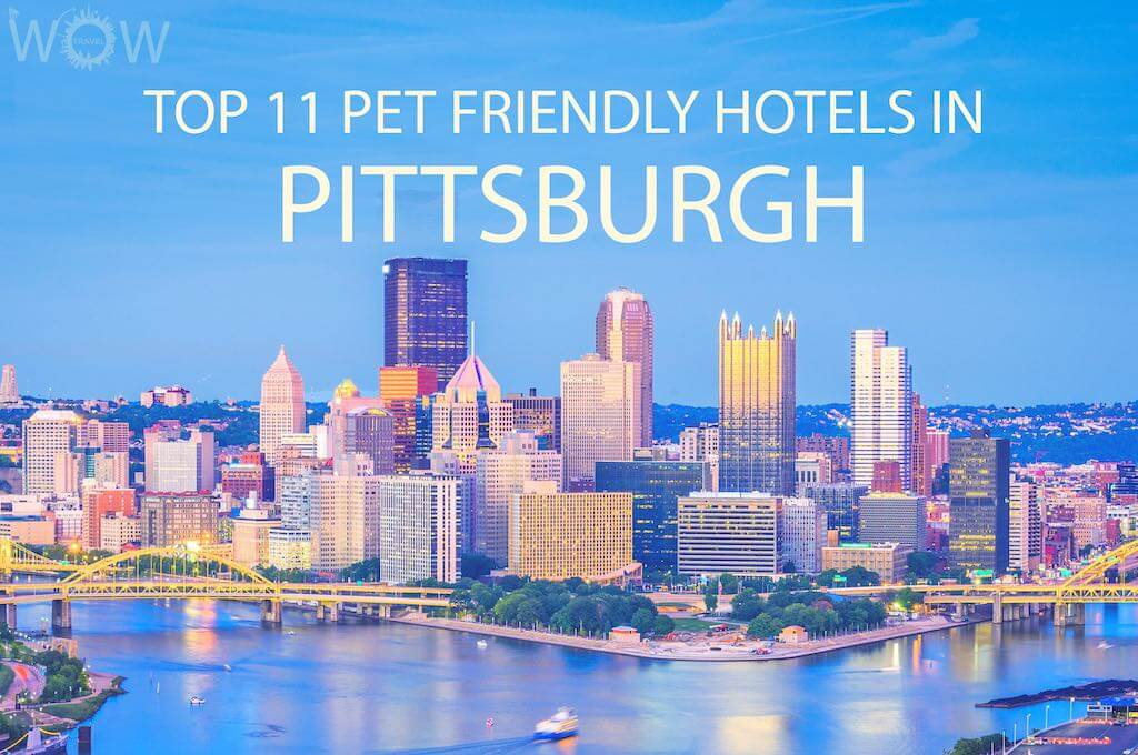 Top 11 Pet Friendly Hotels In Pittsburgh