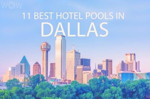 11 Best Hotel Pools In Dallas