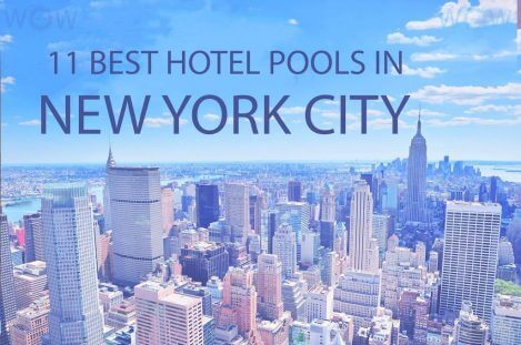11 Best Hotel Pools In New York City