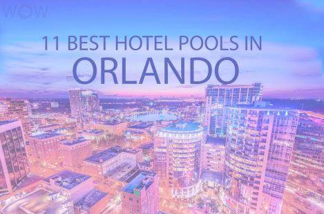 11 Best Hotel Pools In Orlando