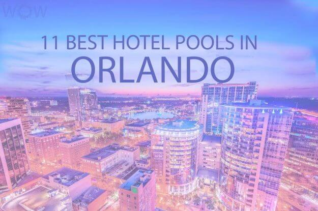 11 Best Hotel Pools In Orlando