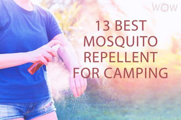 13 Best Mosquito Repellent For Camping