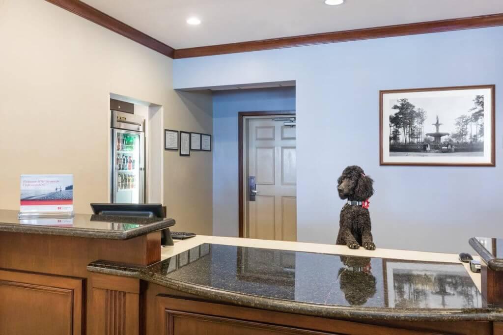 Staybridge Suites Savannah Historic District, Savannah, GA - by booking.com