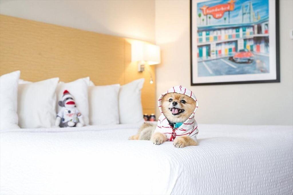 The Thunderbird Inn, Savannah, GA - by booking.com