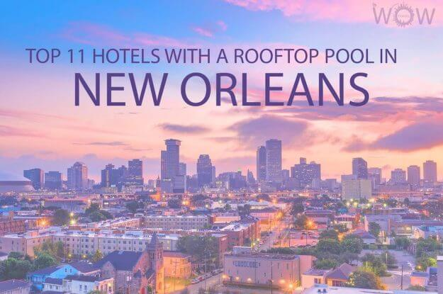 Top 11 Hotels With A Rooftop Pool In New Orleans