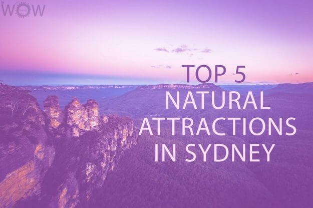 Top 5 Natural Attractions in Sydney