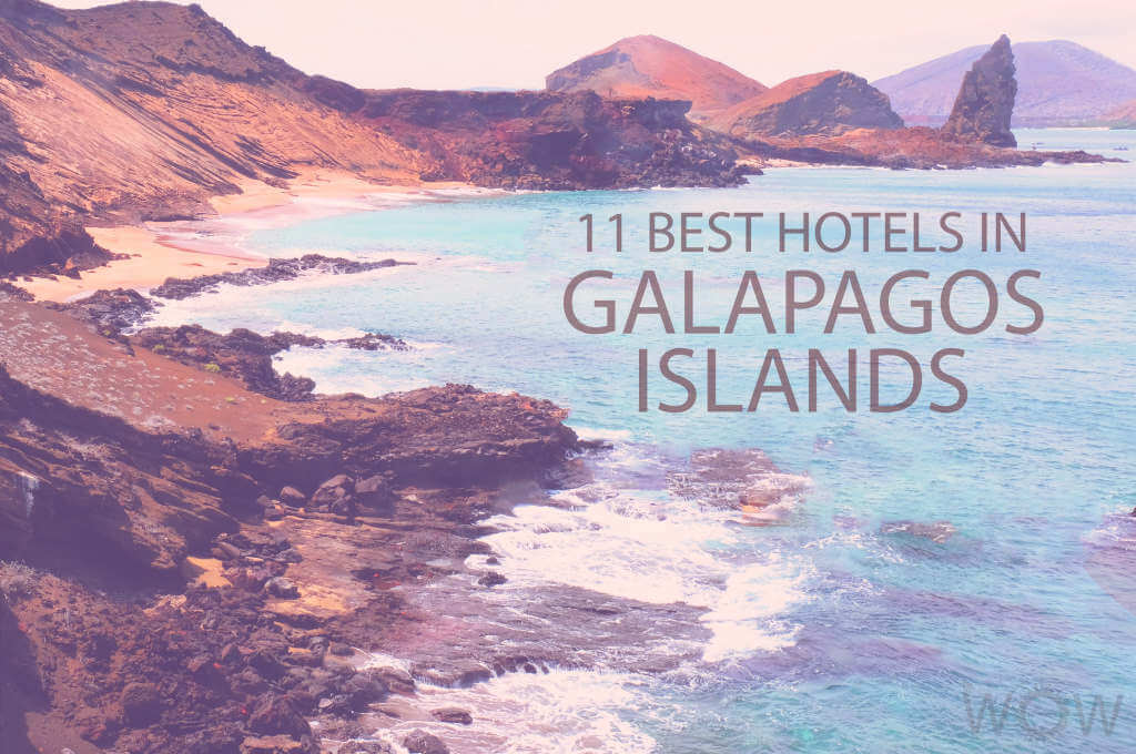 11 Best Hotels in Galapagos Islands