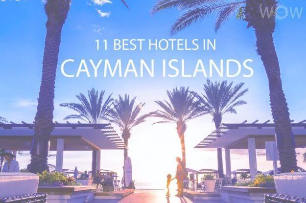 11 Best Hotels in Cayman Islands