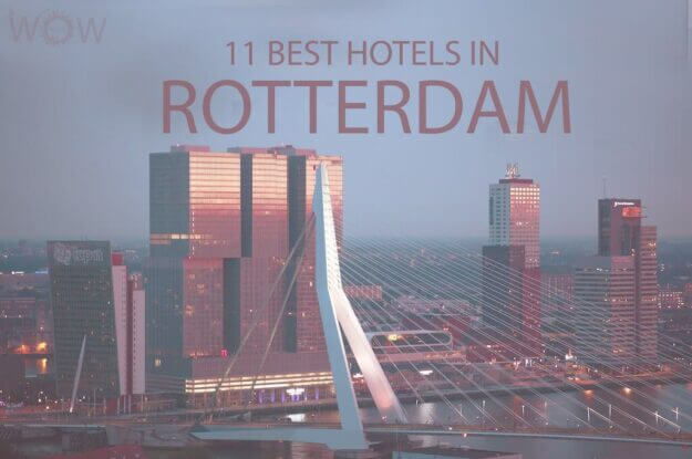 11 Best Hotels in Rotterdam