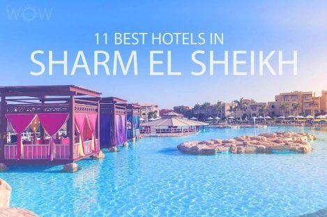 11 Best Hotels in Sharm El Sheikh