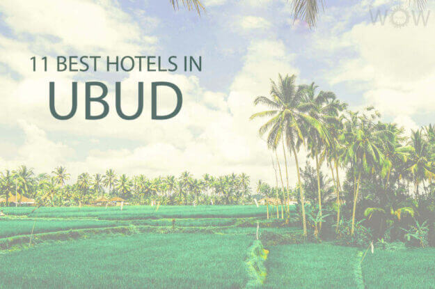 11 Best Hotels In Ubud