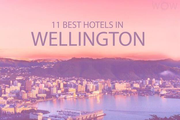 11 Best Hotels in Wellington