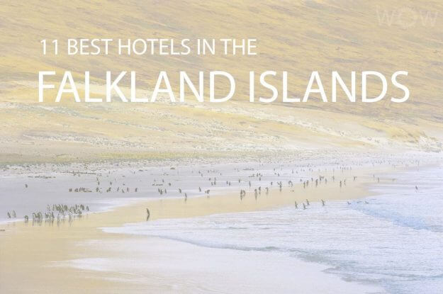 11 Best Hotels in the Falkland Islands