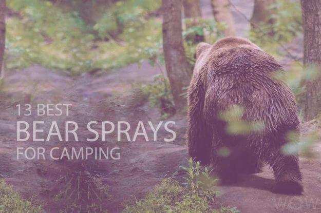 13 Best Bear Sprays for Camping