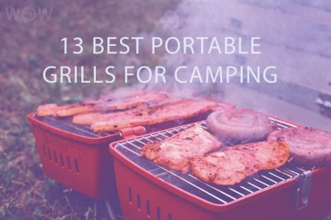 13 Best Portable Grills For Camping