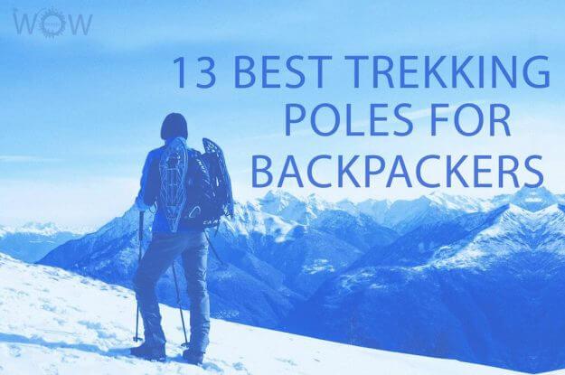 13 Best Trekking Poles For Backpackers