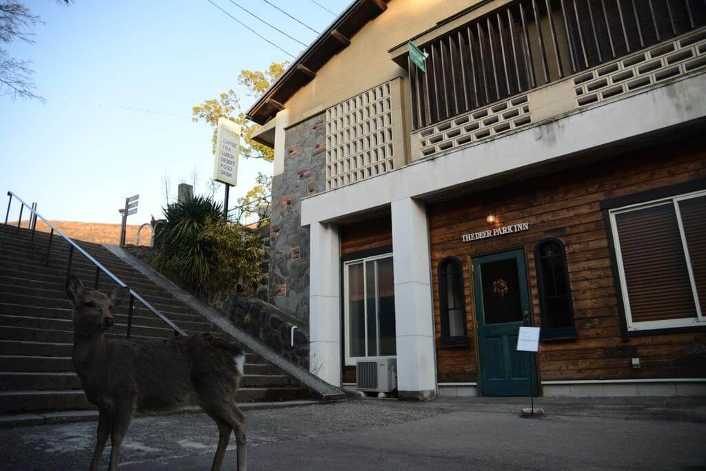 The Deer Park Inn, Nara - by Booking.com
