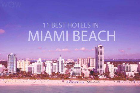 11 Best Hotels in Miami Beach