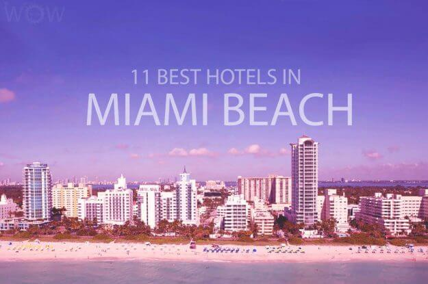 11 Best Hotels in Miami Beach