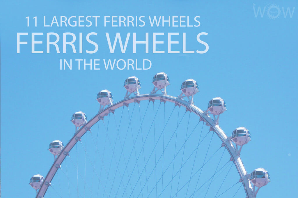 11 Largest Ferris Wheels In The World