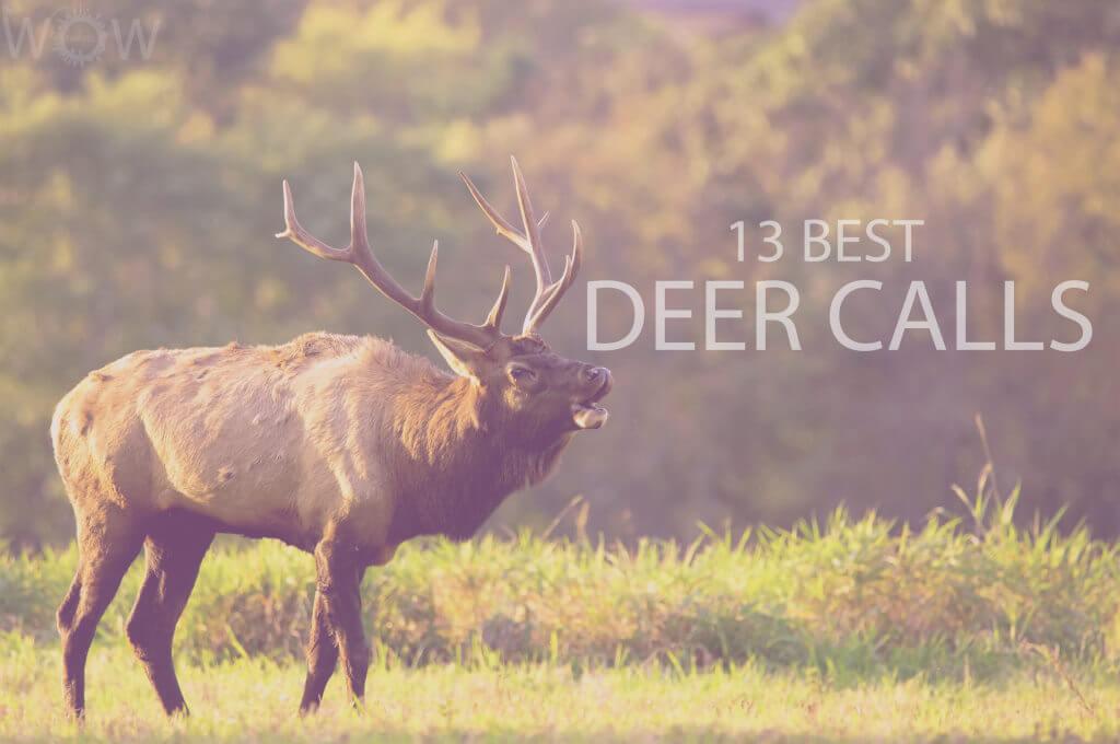 13 Best Deer Calls
