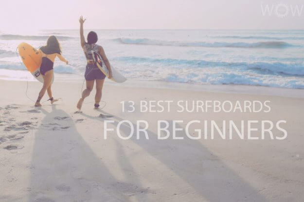 13 Best Surfboards for Beginners