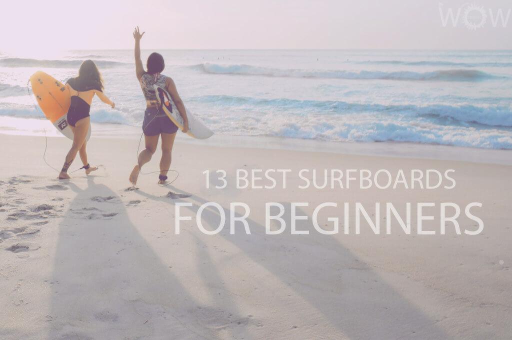 13 Best Surfboards for Beginners