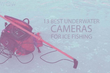 13 Best Underwater Cameras for Ice Fishing