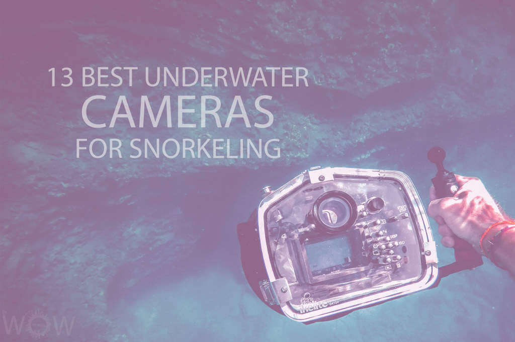 13 Best Underwater Cameras for Snorkeling