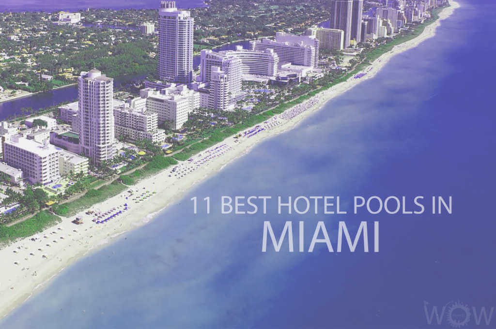 11 Best Hotel Pools In Miami