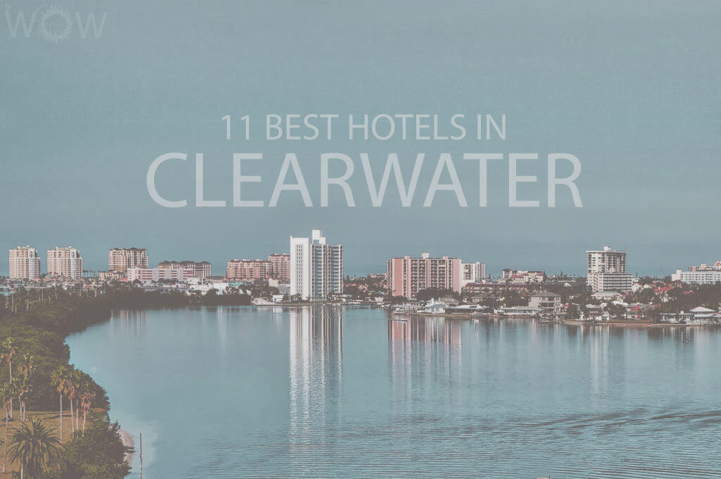 11 Best Hotels in Clearwater FL