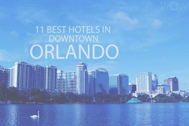 11 Best Hotels in Downtown Orlando