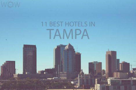 11 Best Hotels in Tampa FL