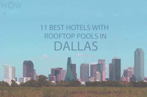 11 Best Hotels with Rooftop Pools In Dallas