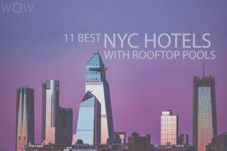 11 Best NYC Hotels With Rooftop Pools