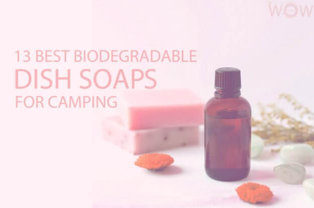 13 Best Biodegradable Dish Soaps for Camping
