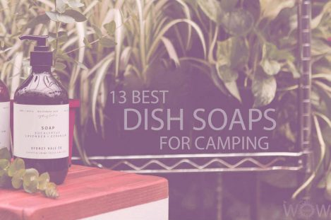 13 Best Dish Soaps for Camping