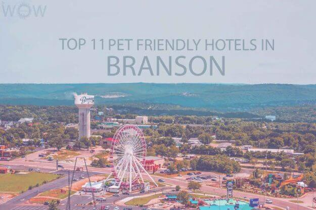 Top 11 Pet Friendly Hotels In Branson Missouri