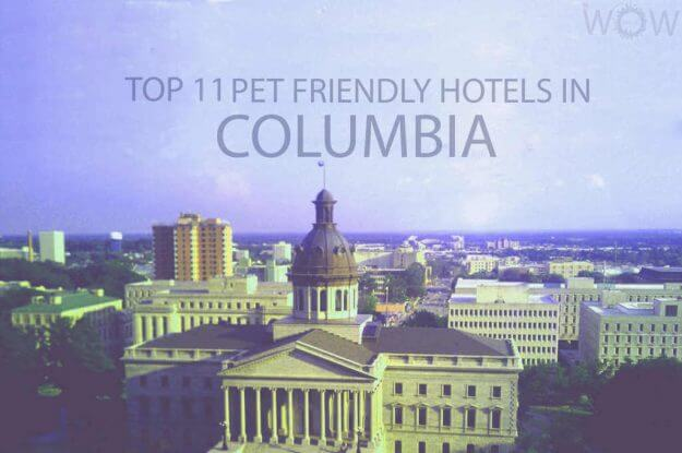 Top 11 Pet Friendly Hotels In Columbia SC