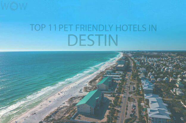 Top 11 Pet Friendly Hotels in Destin