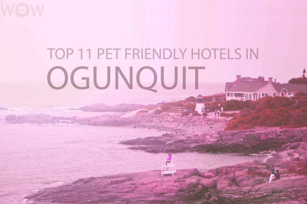 Top 11 Pet Friendly Hotels in Ogunquit Maine