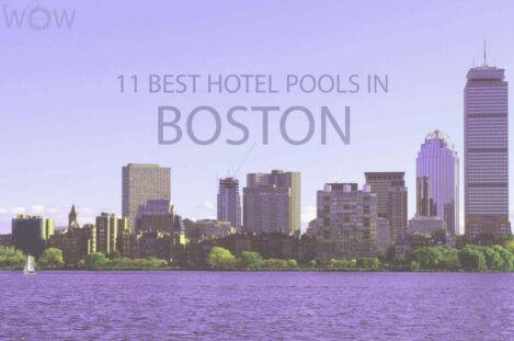 11 Best Hotel Pools In Boston