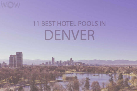 11 Best Hotel Pools In Denver