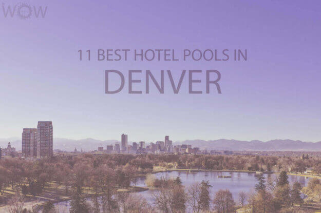 11 Best Hotel Pools In Denver